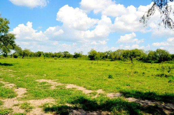 raymondville countryside