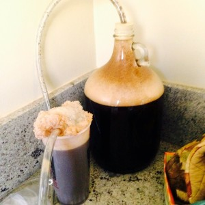 Fermenting the beer!